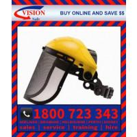 Vision Shield - Brow Guard and Mesh Visor