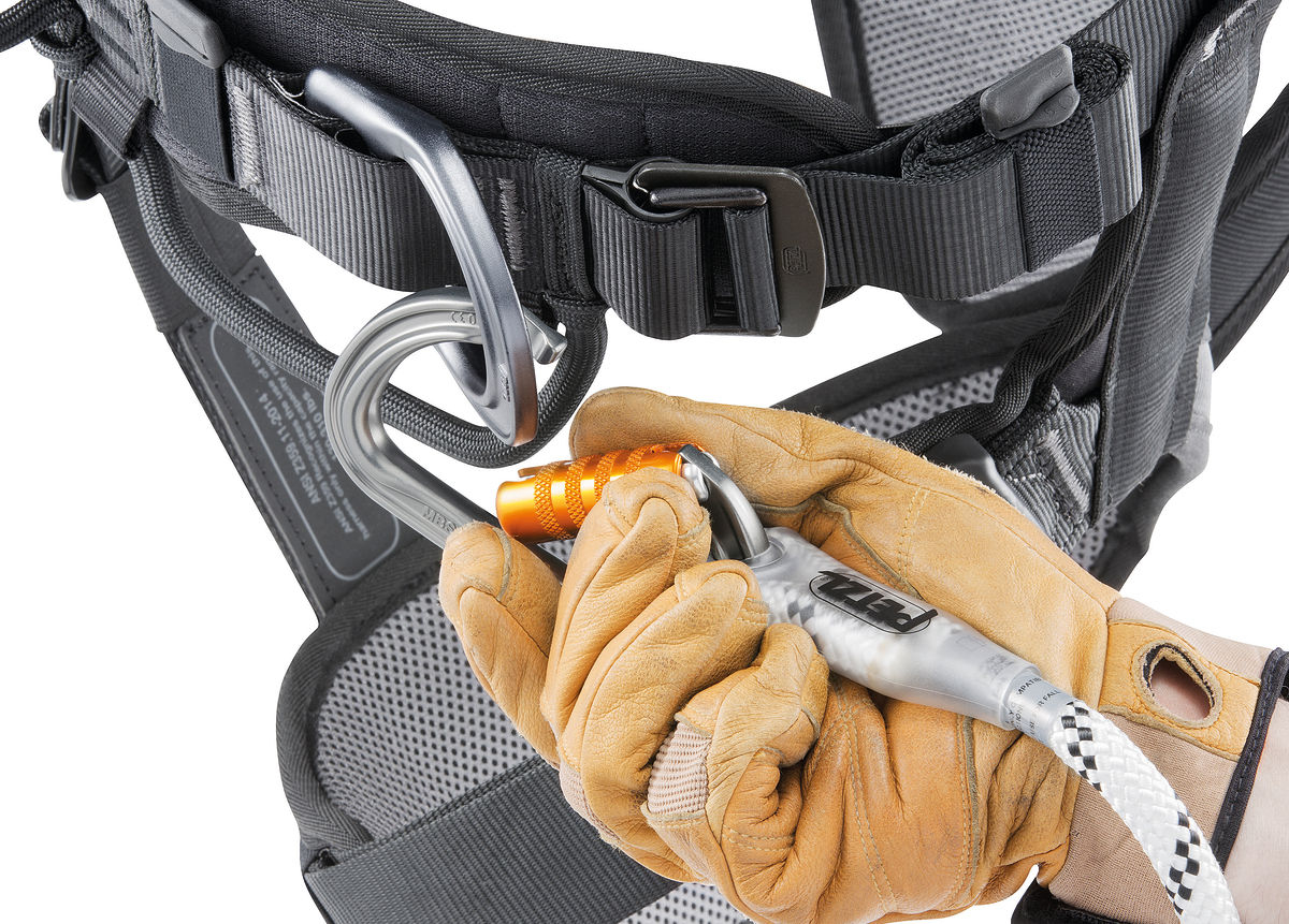 Petzl C083ba_astro_bod International